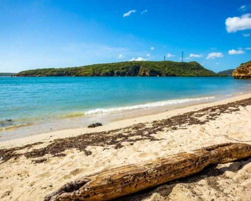 How to Get to Vieques, Puerto Rico
